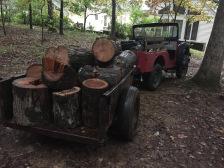 Haling wood